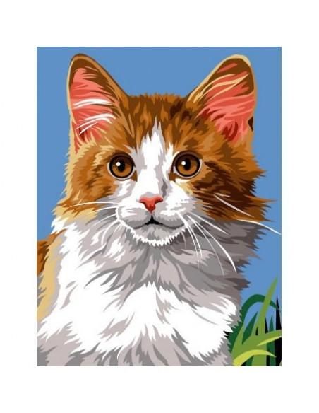 Canevas Chat marbré roux et blanc
